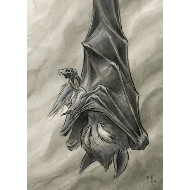 Vigilant Bat